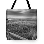 Fort Hill Bw Tote Bag