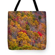 Fort Mountain State Park Cool Springs Overlook Tote Bag