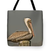 Fort Pierce Pelican Tote Bag