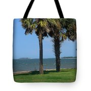 Fort Sumter Charleston Sc Tote Bag