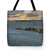 Fort Sumter Protection Tote Bag