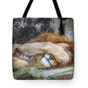 Fort Worth Zoo Sleepy Lion Tote Bag