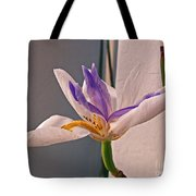 Fortnight Lily Tote Bag