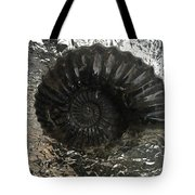 Fossil 91,000,000 Years Tote Bag