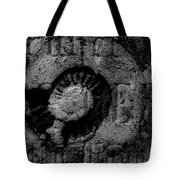 Fossil Grave IIi Tote Bag