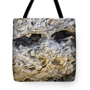 Fossil Rock Abstract - Eyes Tote Bag