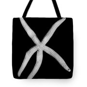 Fossil: Starfish Tote Bag