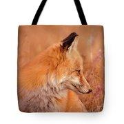 Found Fox Tote Bag