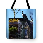 Fountain And Peacock Tote Bag