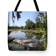 Fountain At The Swamp Tote Bag