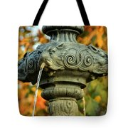 Fountain At Union Park Tote Bag