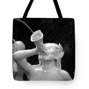 Fountain Dreams Tote Bag