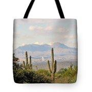 Fountain Hills Arizona Tote Bag
