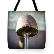 Fountain In Lobloch Tote Bag