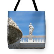 Fountain In The Piazza Tote Bag