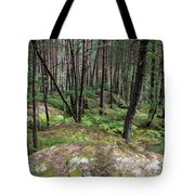 Fountainbleau Forest Tote Bag