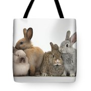 Four Baby Rabbits Tote Bag
