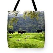 Four Cows At Nojoqui Ranch Tote Bag