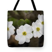 Four Dogwoods Tote Bag