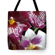 Four Exotic Orchid Blossoms Tote Bag