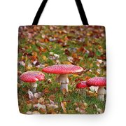 Four Fly Agarics Among Dead Leaves Tote Bag