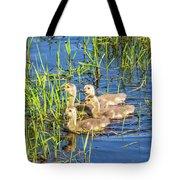 Four Goslings Tote Bag