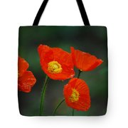 Four Poppies Tote Bag