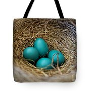 Four Robin Eggs In Nest Tote Bag