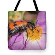 Four-spotted Blister Beetle - Mylabris Quadripunctata Tote Bag