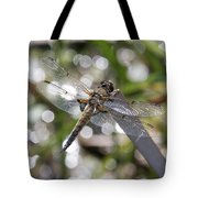 Four-spotted Skimmer Tote Bag