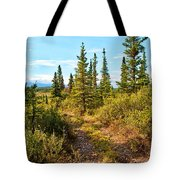 Four Wheeler Trail - Richardson Highway Tote Bag
