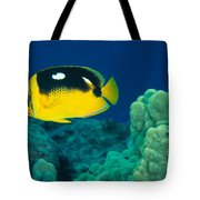 Fourspot Butterflyfish Tote Bag