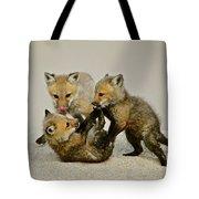 Fox Cubs At Play II Tote Bag