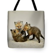 Fox Cubs At Play Tote Bag
