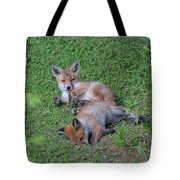 Fox Cubs Chilling Out Tote Bag