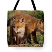 Fox Cubs Playing Tote Bag by William Jobes