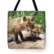 Fox Feather Play Tote Bag