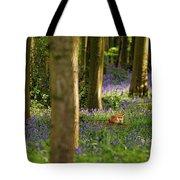 Fox In Bluebells Tote Bag