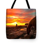 Fox In The Tidepools Tote Bag