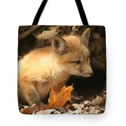 Fox Kit At Entrance To Den Tote Bag