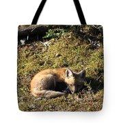 Fox Kit Tote Bag