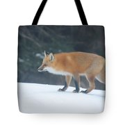 Fox On The Prowl Tote Bag