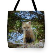 Fox Pup112 Tote Bag