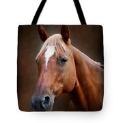 Fox - Quarter Horse Tote Bag by Sandy Keeton
