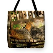 Foxes In A Chair Tote Bag