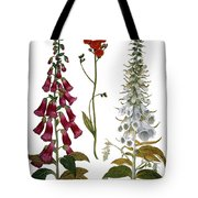 Foxglove And Hawkweed Tote Bag