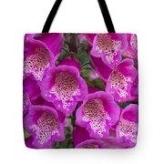 Foxgloves 1 Tote Bag