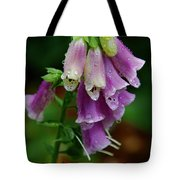 Foxgloves In The Rain Tote Bag
