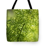 Foxtail Fern In Spring Tote Bag