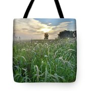Foxtail Grasses In Glacial Park Tote Bag